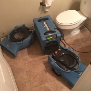 Toilet Overflow Cleanup Services in Dallas/Fort Worth
